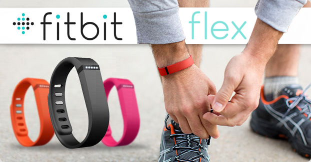 Pulsera de Actividad FitBit Flex